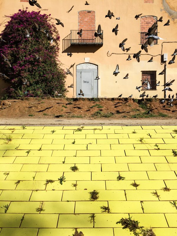 The Birds, Barcelona