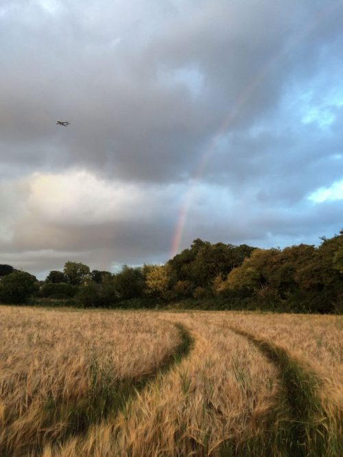 An aeroplane flies over a field in north Dublin, Ireland